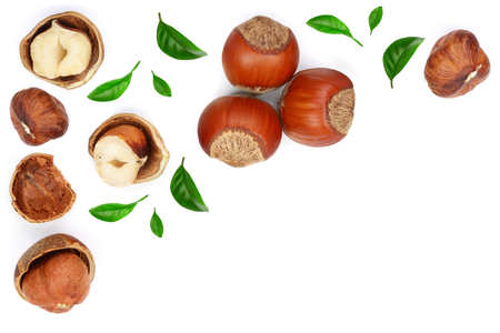 Photo for Hazelnuts with leaves with copy space for your text isolated on white background. Top view. Flat lay - Royalty Free Image
