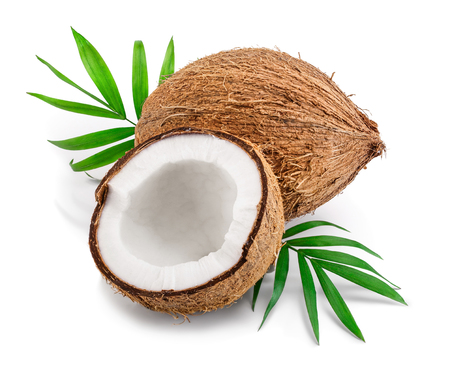 Foto de coconut with leaves isolated on white background - Imagen libre de derechos