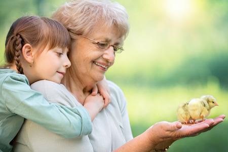Photo pour Grandmother with grandaughter are playing with chickens outdoors - image libre de droit