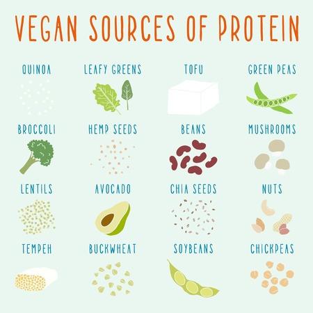 Vektor für Vegan sources of protein. Vector EPS 10 hand drawn illustration - Lizenzfreies Bild