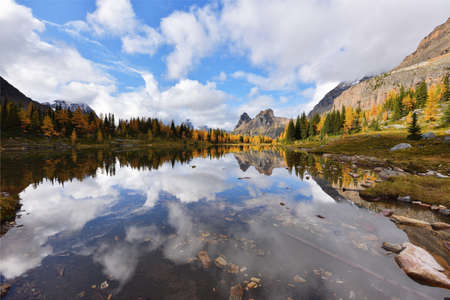 Photo pour Opabin Plateau trail and Lake O'Hara, Yoho National Park, BC - image libre de droit