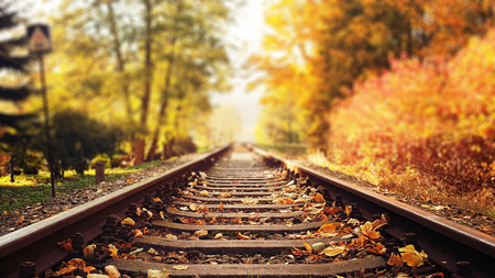 Foto per Colorful, autumn leaves falling down on railway tracks - Immagine Royalty Free