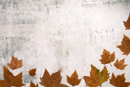 Foto für Pattern made of red and yellow fall leaves on concrete background, autumn concept. Flat lay, top view - Lizenzfreies Bild