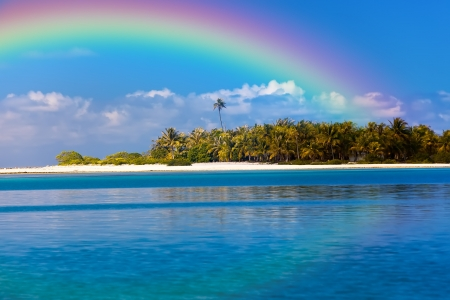 Photo pour The tropical island with palm trees in the ocean and a rainbow over it - image libre de droit