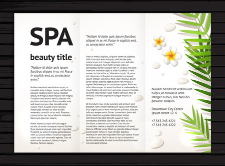 Illustration for Modern spa beauty brochure design with realistic frangipani flowers, palm leaves and stones;  vector design template with sample text on black wood background - Royalty Free Image