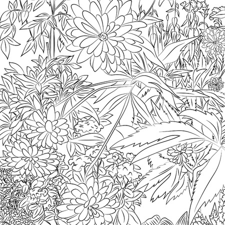 Chrysanthemum flowers.Vector illustration, abstract, black outline on white background, hand-drawn