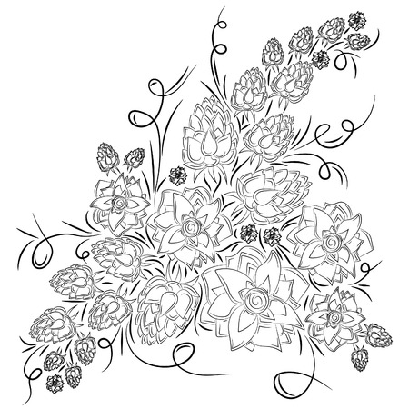 Flowers and buds of ginger. Vector illustration, abstract, black outline on white background, hand-drawn