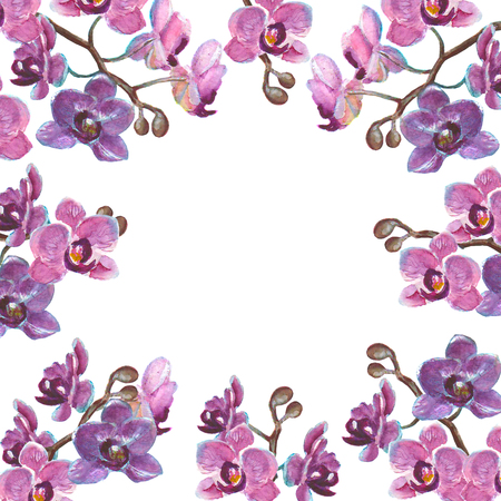 Watercolor orchid branches isolated on white background