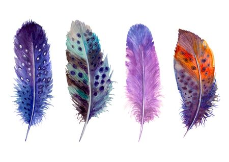 Illustration pour Watercolor feathers set isolated on white. Hand drawn watercolour bird feather vibrant boho style bright illustration. Print design for t-shirts, invitation, wedding card. - image libre de droit