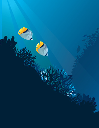 Vector illustration of beautiful banner fish in nature
