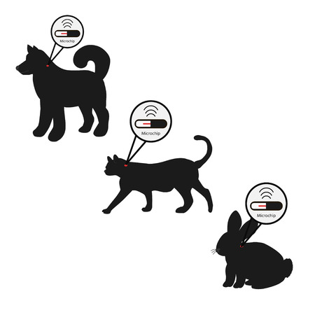 Illustration pour Pet services - microchipping. Icon dog, cat and rabbit with microchip pill inside the body and information about owner tagged with a microchip implant. - image libre de droit