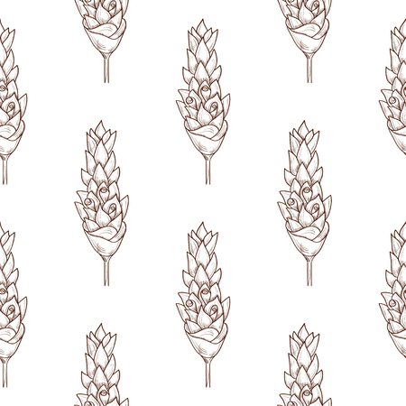 Illustration pour Turmeric. Flower. Sketch. Background, wallpaper, texture, seamless. Monophonic. - image libre de droit