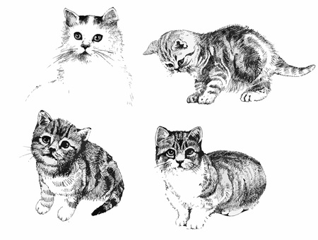 Illustration pour Black and white cats and kittens set inkn hand drawn illustration - image libre de droit