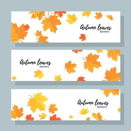 Illustration pour Set of three horizontal banners with autumn maple leaves. Collection of templates for autumn sales with text. - image libre de droit