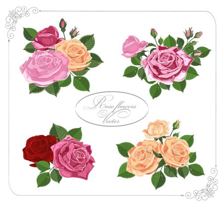 Illustration pour Vector floral design in frame.Bouquets of red pink yellow roses. Pink red wedding flowers and delicate leaves. Elements are isolated on white-Vector graphics. - image libre de droit