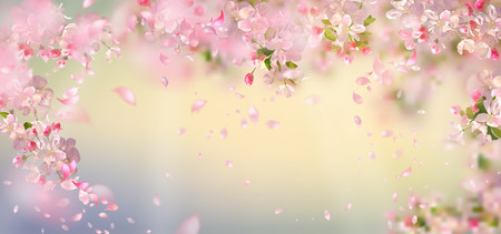 Illustration pour Flying petals on spring background. Flowers and petals in the wind. Vector background with plum or cherry blossom. Hanging flowers - image libre de droit
