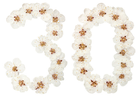 Numeral 30, thirty, from natural white flowers of apricot tree, isolated on white background