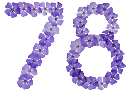 Numeral 78, seventy eight, from natural blue flowers of periwinkle, isolated on white background