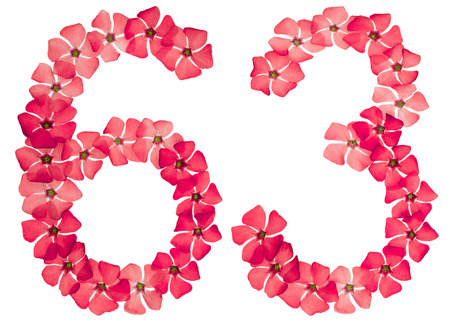 Numeral 63, sixty three, from natural red flowers of periwinkle, isolated on white background