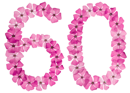 Foto de Numeral 60, sixty, from natural pink flowers of periwinkle, isolated on white background - Imagen libre de derechos