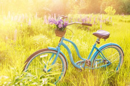 Foto per Vintage bicycle with basket full of flowers standing in the sunny field - Immagine Royalty Free