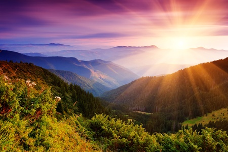 Photo pour Summer landscape in mountains with the sun - image libre de droit