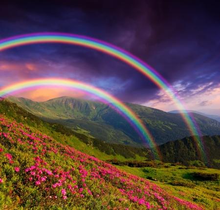 Photo pour Mountain landscape with a rainbow over flowers - image libre de droit