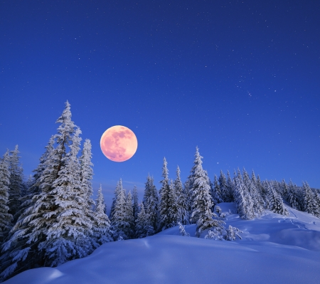 Foto de Winter landscape in the mountains at night  A full moon and a starry sky  Carpathians, Ukraine - Imagen libre de derechos