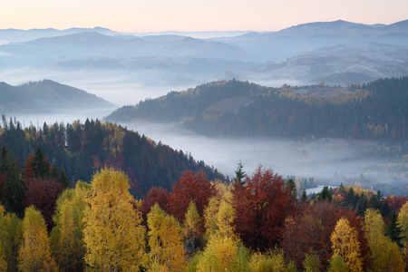 Photo pour Autumn landscape with a beautiful forest in the mountains and morning fog - image libre de droit