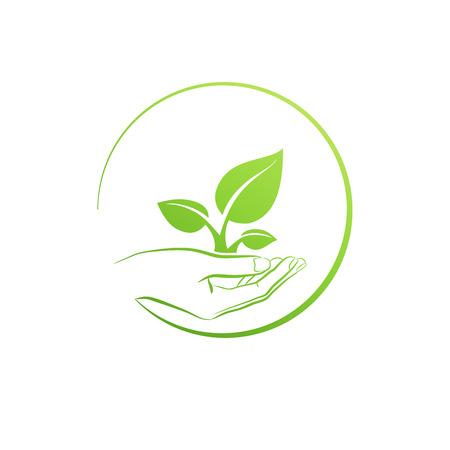 Illustration pour Hand holding plant, icon growth concept vector illustration - image libre de droit