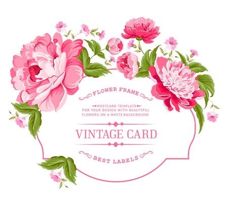 Illustration pour Luxurious invitation card of color peony flowers  Vector illustration  - image libre de droit