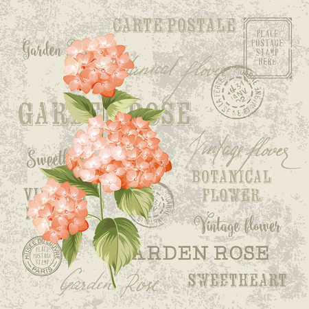 Red Flowers Design For Invtation Card Template Vintage Postcard Background Vector Template For Wedding Invitation Label With Hortensia Flowers Royalty Free Vector Graphics