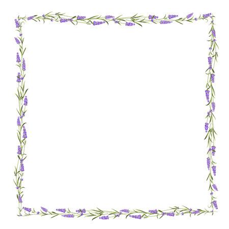 Illustration pour The Lavender frame line. - image libre de droit