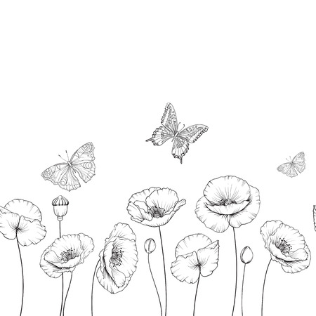 Spring flower background with butterflies. Black and white contour. Flying butterfly card. Butterfly isolated over white.