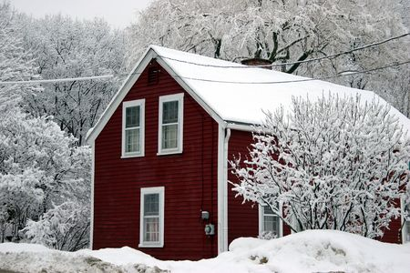 Red house among trees under snow