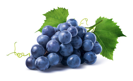 Blue grapes dry bunch isolated on white background as package design element