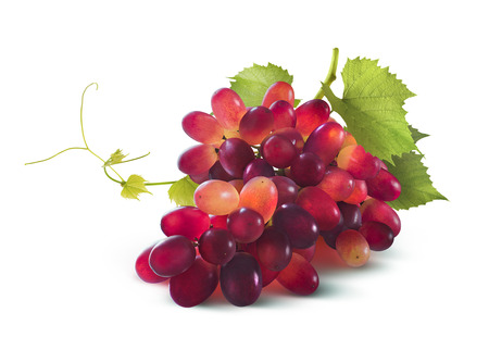Red grapes bunch with leaf isolated on white background as package design element