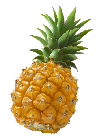 Foto de Mini pineapple angle isolated on white background as package design element - Imagen libre de derechos