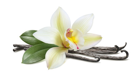 Photo for Vanilla with leaves horizontal pod isolated on white background - Royalty Free Image