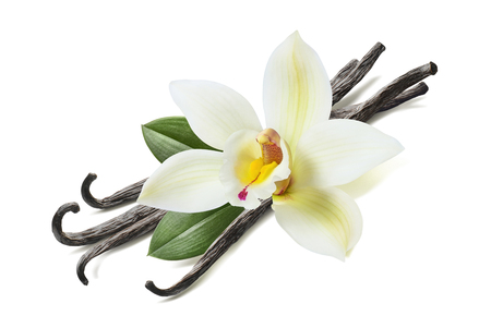 Foto de Many vanilla sticks, flower and leaves isolated on white background - Imagen libre de derechos