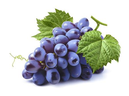 Photo pour Blue grapes bunch isolated on white background as package design element - image libre de droit
