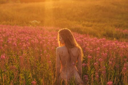 Photo pour Naked woman staying by back among blooming Sally field in sunset - image libre de droit