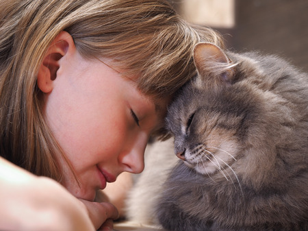 Photo pour Cat and girl nose to nose. Tenderness, love, friendship. Sweet and loving picture of friendship and child cat - image libre de droit