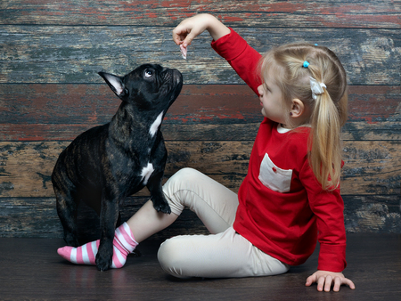 Little girl shows a piece of dog treats for the animals. Dog Training a child. Background old wooden board
