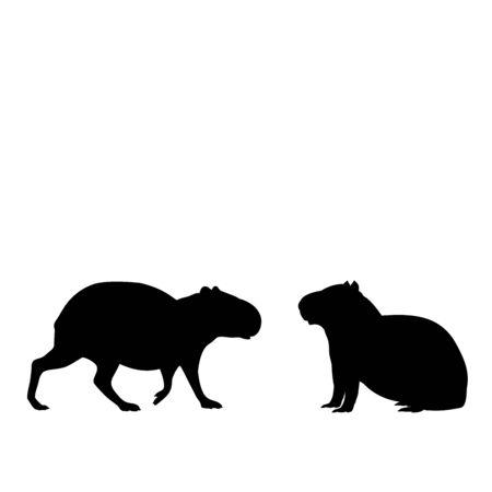 Illustration pour Silhouette of two capybaras. Capybara family. Vector illustrator - image libre de droit