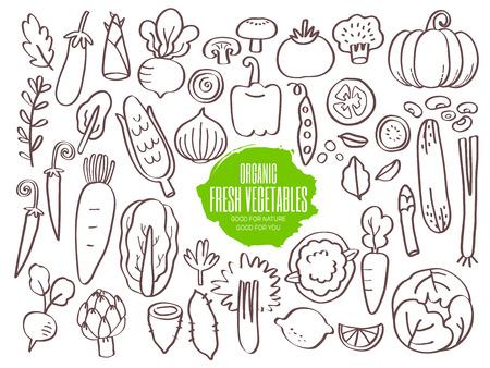Set of hand drawn vegetables doodles