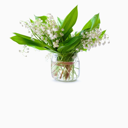 Photo pour Bouquet of lily of the valley in a glass jar on a white background - image libre de droit
