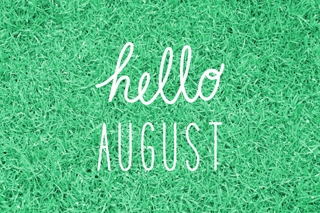Hello August greeting for decoration.