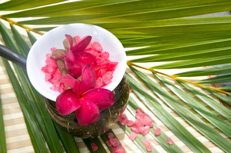 bowl of sea salt and red plumeria for spa treatment