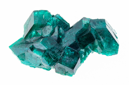 Photo for macro photography of natural mineral from geological collection - raw Dioptase (copper emerald) crystals on white background - Royalty Free Image